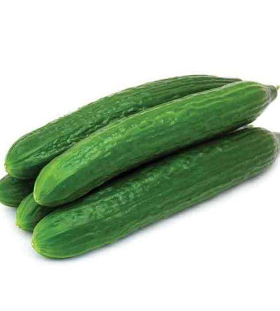 cucumber agurk