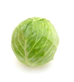 Cabbage,kål